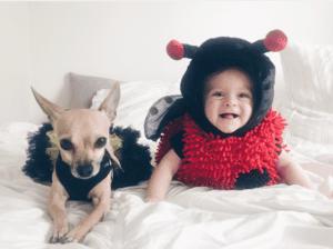 ladybug baby halloween costume